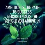 Successful authors persist