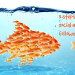 3 steps to more social media followers